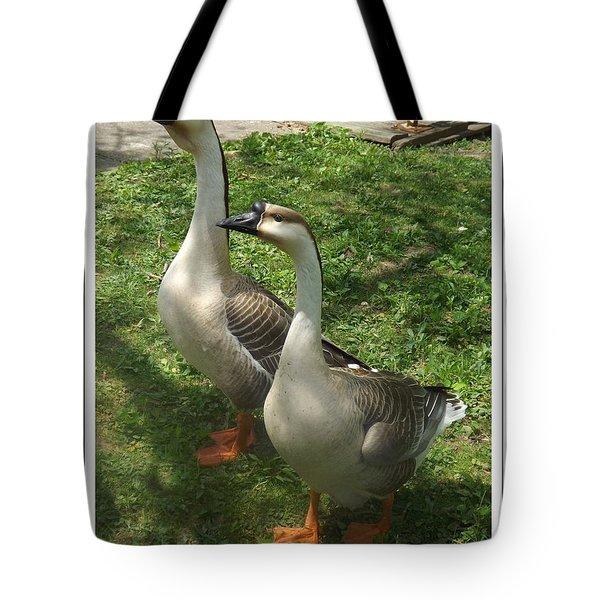 Chinese Swan Goose Pair 2 Tote Bag by Sara  Raber