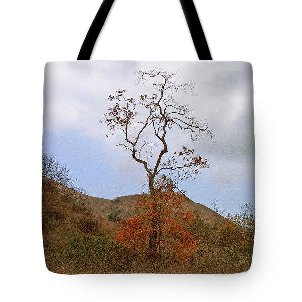 Chino Hills Tree Tote Bag by Ben and Raisa Gertsberg