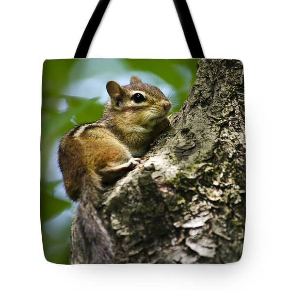 Chipmunk On A Limb Tote Bag by Christina Rollo