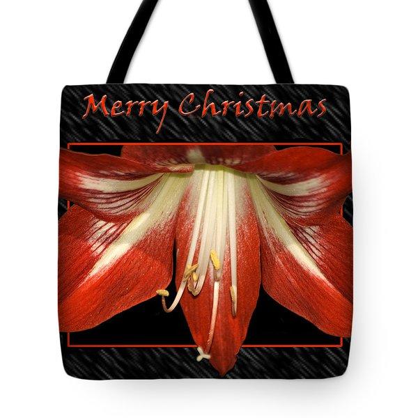 Christmas Amaryllis Tote Bag by Carolyn Marshall