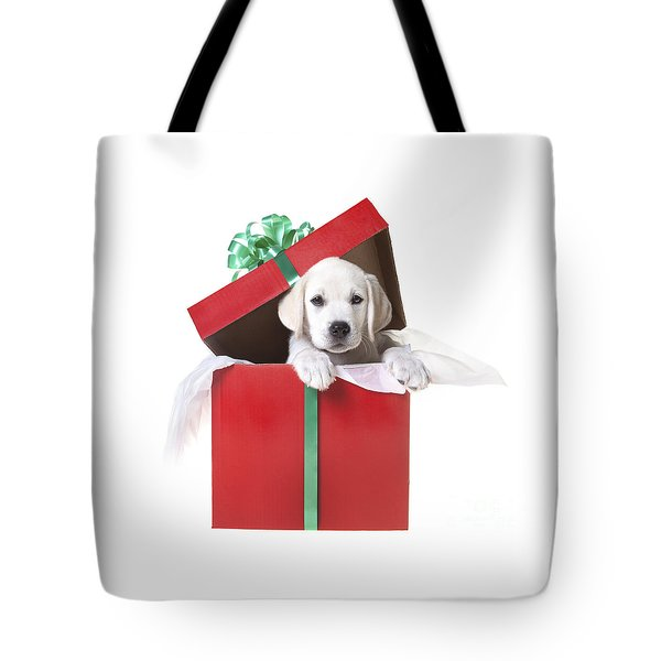 Christmas Puppy Tote Bag by Diane Diederich