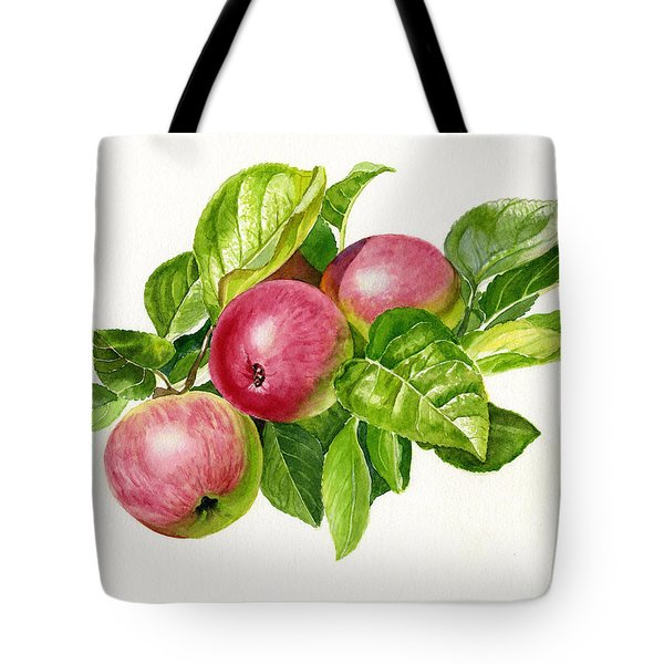 Cider Apples With White Background Tote Bag by Sharon Freeman