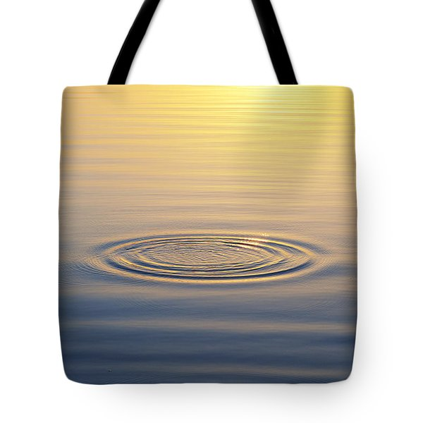 Circles At Sunrise Tote Bag by Tim Gainey