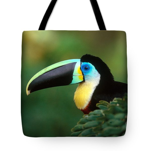 Citron-throated Toucan Tote Bag by Art Wolfe