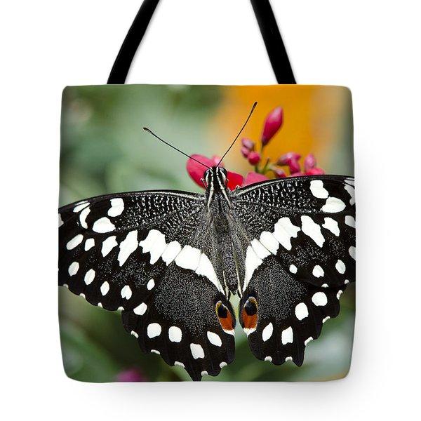 Citrus Swallowtail Butterfly Tote Bag by Saija  Lehtonen