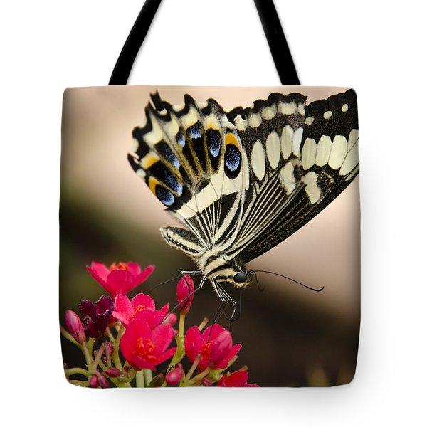 Citrus Swallowtail  Tote Bag by Saija  Lehtonen