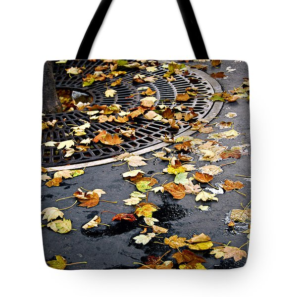 City Fall Tote Bag by Elena Elisseeva