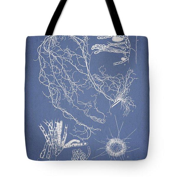 Cladosiphon Decipiens Tote Bag by Aged Pixel