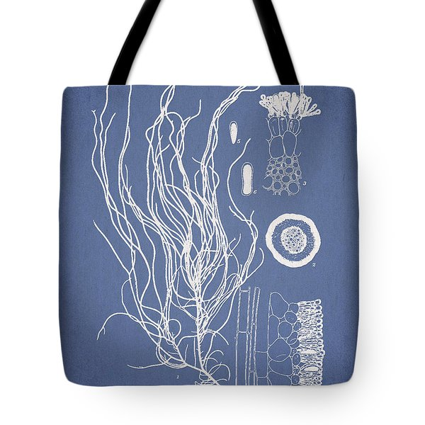 Cladosiphon Flagelliformis Tote Bag by Aged Pixel