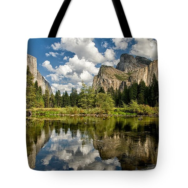 Classic Valley View Tote Bag by Cat Connor