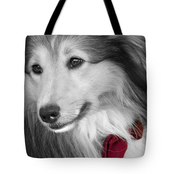 Classy Red Tote Bag by Loriental Photography