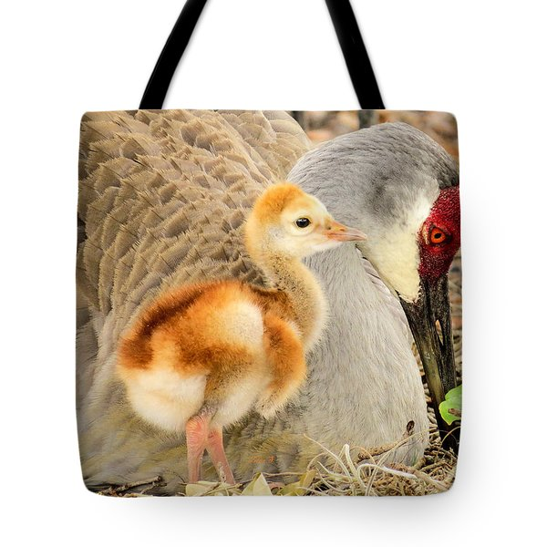 Close To Mother Tote Bag by Zina Stromberg