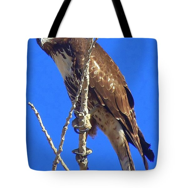 Close Up  Tote Bag by Bobbee Rickard