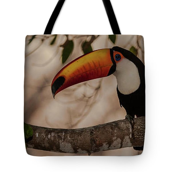 Close-up Of Tocu Toucan Ramphastos Toco Tote Bag by Panoramic Images
