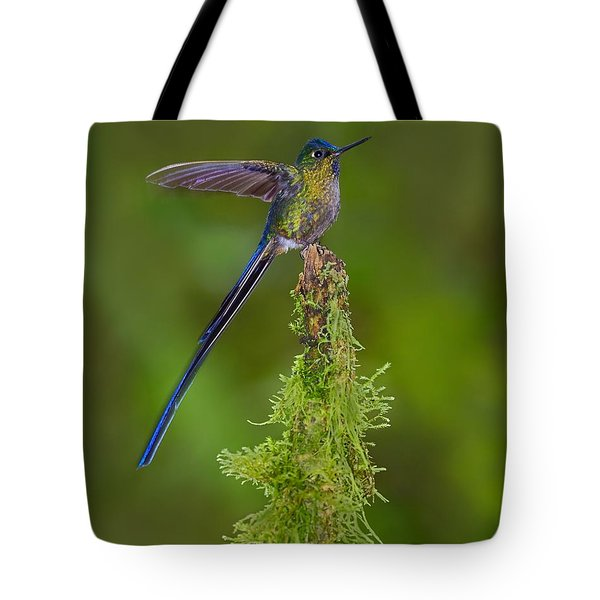 Cloud Forest Fairy Tote Bag by Tony Beck