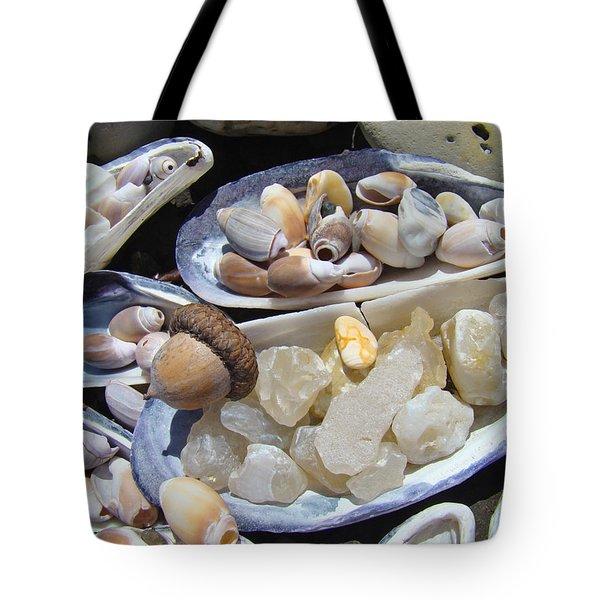 Coastal Beach Art Prints Agates Shells Acorn Tote Bag by Baslee Troutman