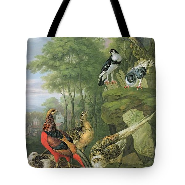 Cock Pheasant Hen Pheasant And Chicks And Other Birds In A Classical Landscape Tote Bag by Pieter Casteels