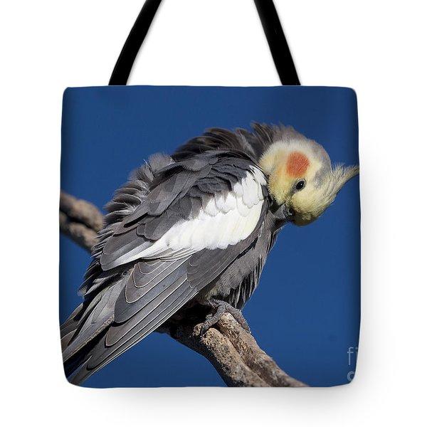 Cockatiel Tote Bag by Steven Ralser