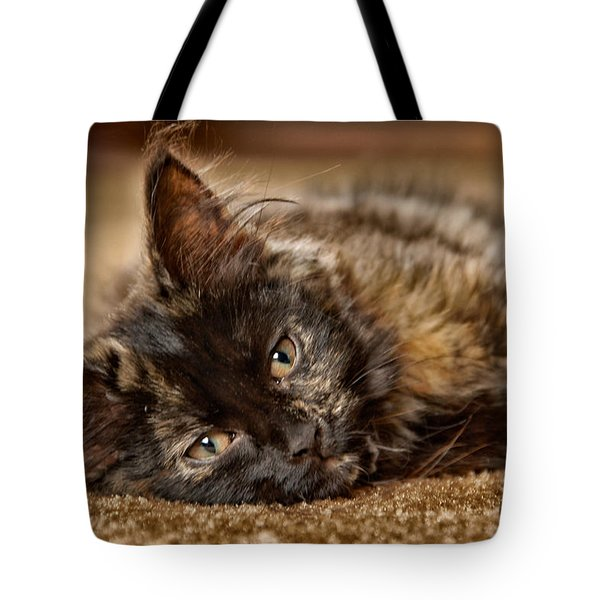 Coco Kitten Tote Bag by Trever Miller