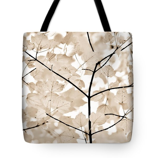 Coffee Brown Leaves Melody Tote Bag by Jennie Marie Schell