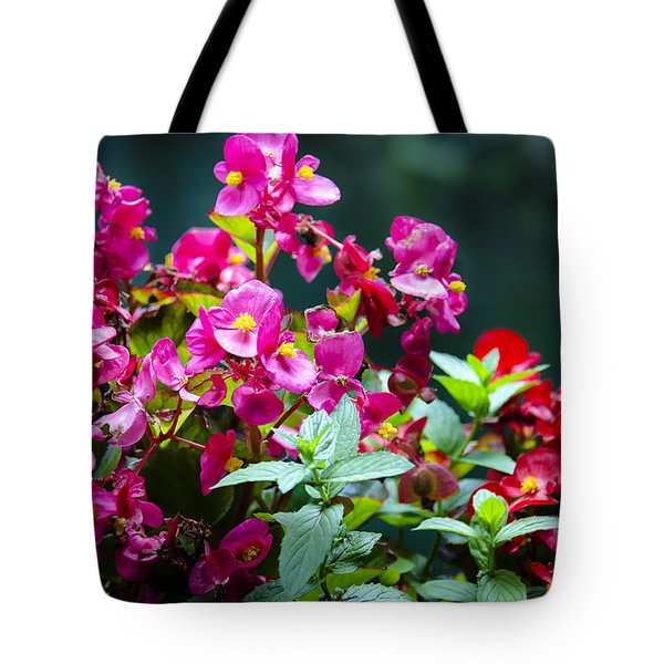 Color Explosion Tote Bag by Sotiris Filippou