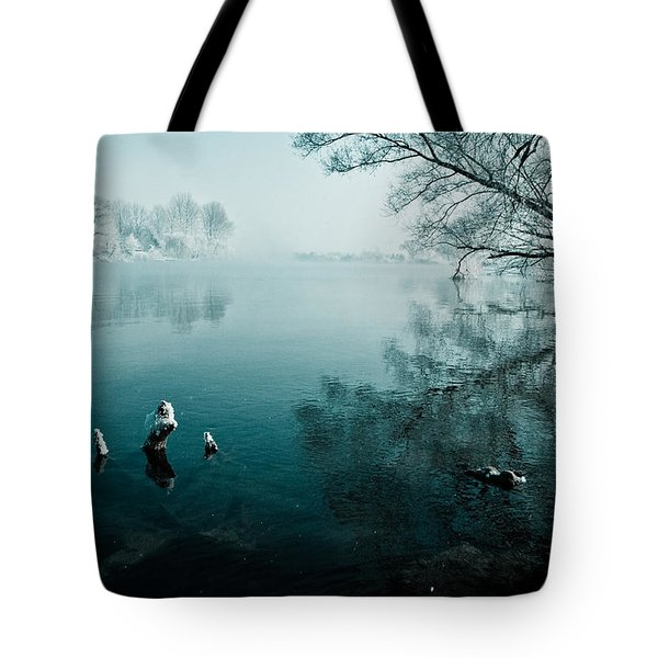 Color of Ice Tote Bag by Davorin Mance