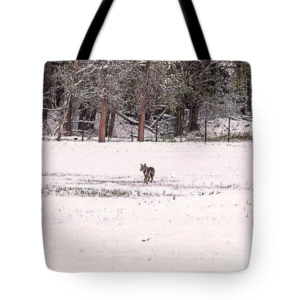 Colorado Coyote Play Tote Bag by Janice Rae Pariza