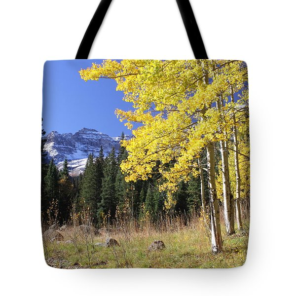 Colorado Dreamin' Tote Bag by Eric Glaser