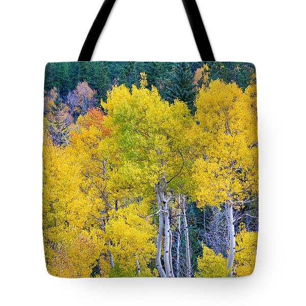 Colorful Forest Tote Bag by James BO  Insogna