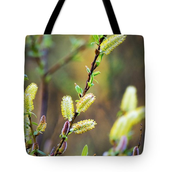 Colorful Spring Pussy Willows Tote Bag by Christina Rollo