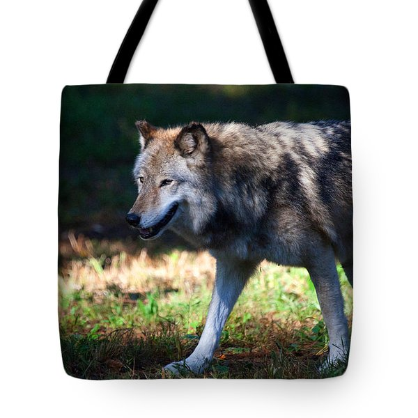 Colorful Wolf Tote Bag by Karol  Livote