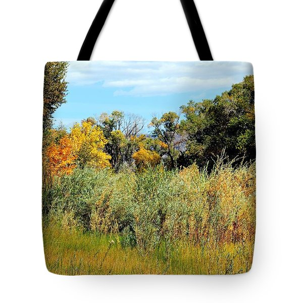 Colors Along The Gunnison Tote Bag by Bob Hislop