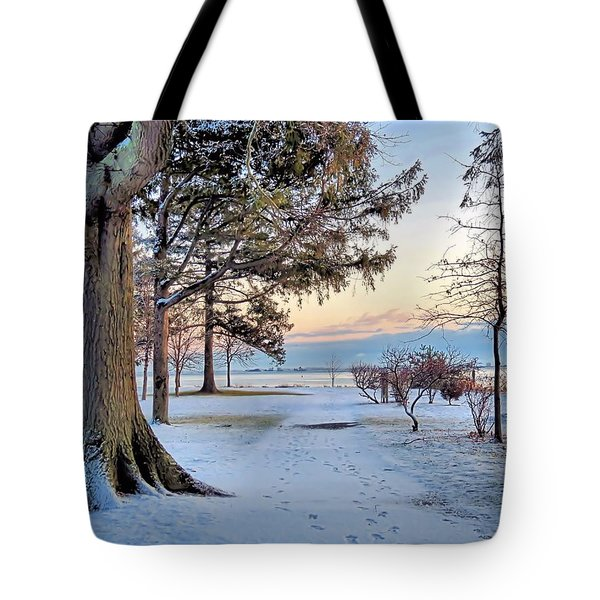 Colors Of Morning Tote Bag by Janice Drew
