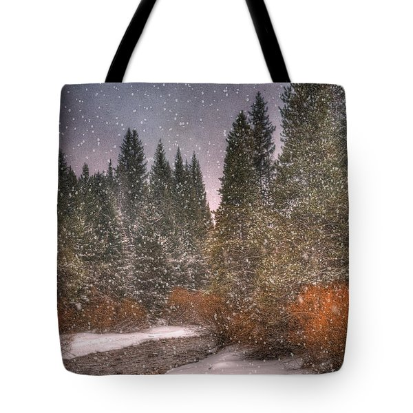 Colours of Winter Tote Bag by Juli Scalzi