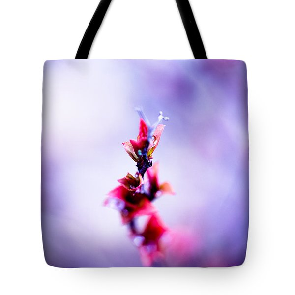 Comatose Tote Bag by Shane Holsclaw