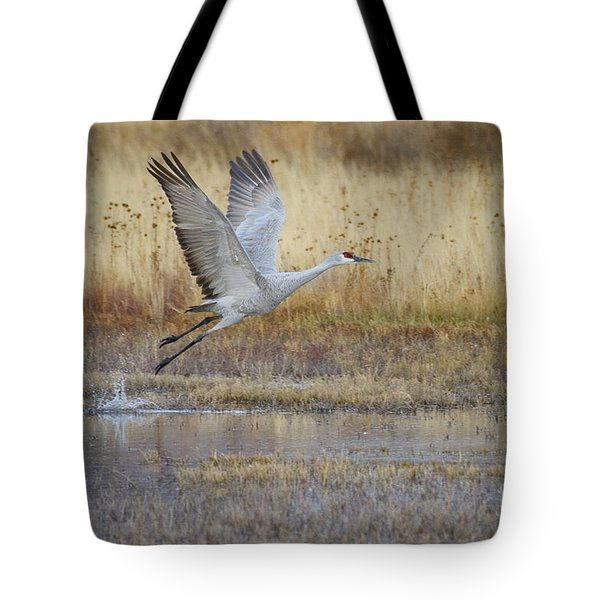 Come Fly With Me Tote Bag by Ruth Jolly