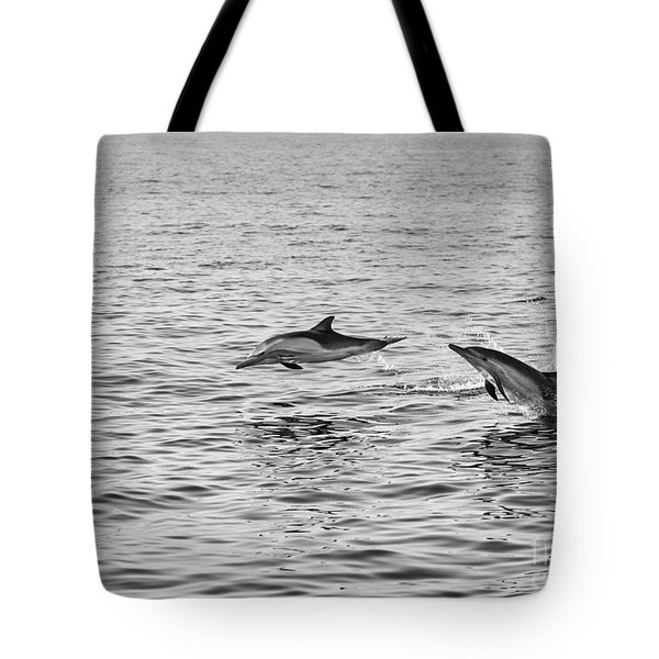 Common Dolphins Leaping. Tote Bag by Jamie Pham