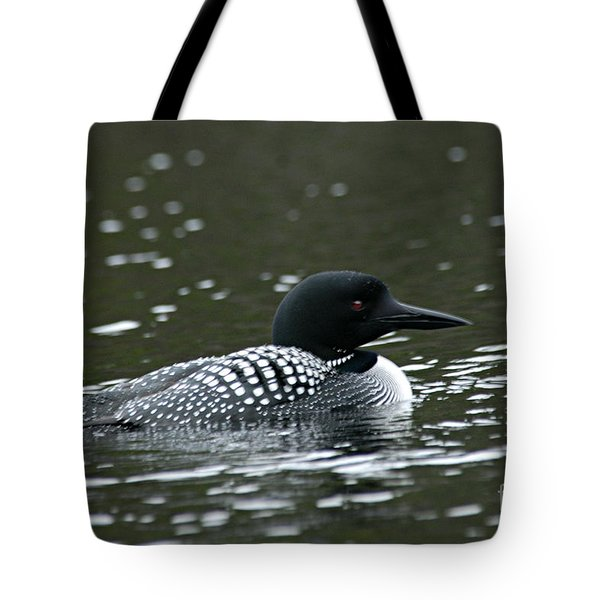 Common Loon 3 Tote Bag by Larry Ricker