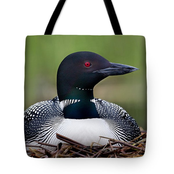 Common Loon On Nest British Columbia Tote Bag by Connor Stefanison
