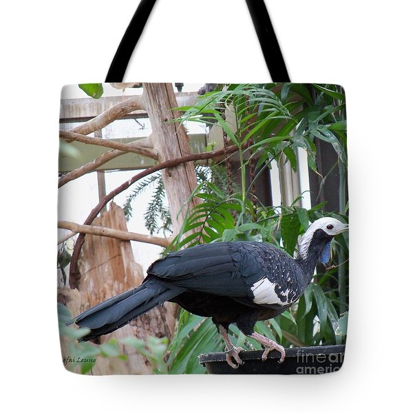 Common Piping Guan Tote Bag by Lingfai Leung