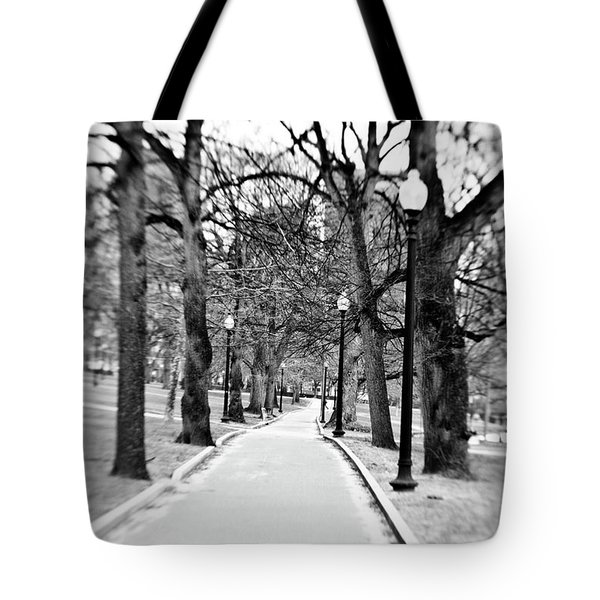Commons Park Pathway Tote Bag by Scott Pellegrin