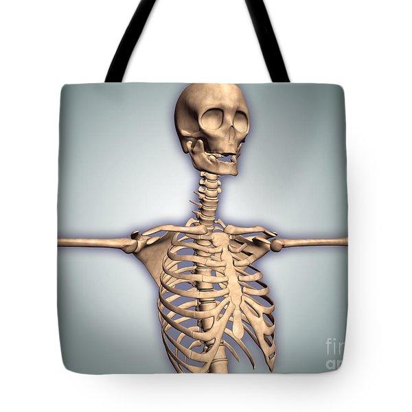 Conceptual Image Of Human Rib Cage Tote Bag by Stocktrek Images