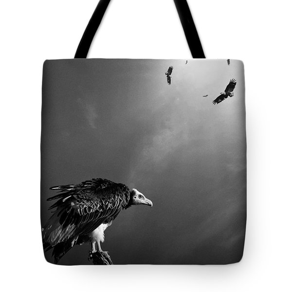 Conceptual - Vultures Awaiting Tote Bag by Johan Swanepoel