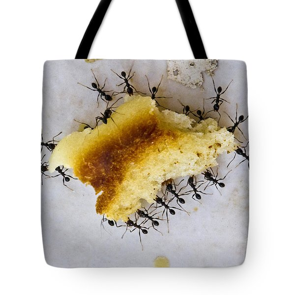 Concerted Action Tote Bag by Heiko Koehrer-Wagner