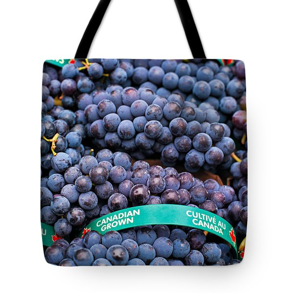 Concord Grapes Tote Bag by Mary  Smyth