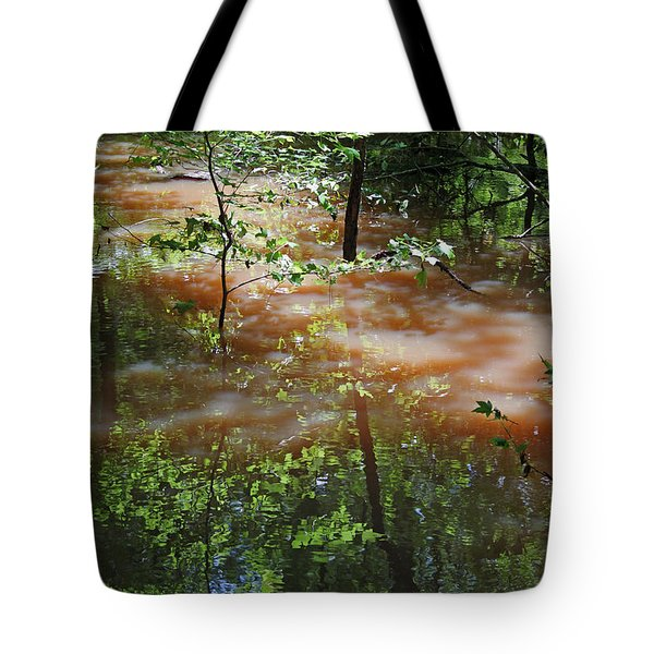 Congaree Swamp In Flood Conditions Tote Bag by Suzanne Gaff