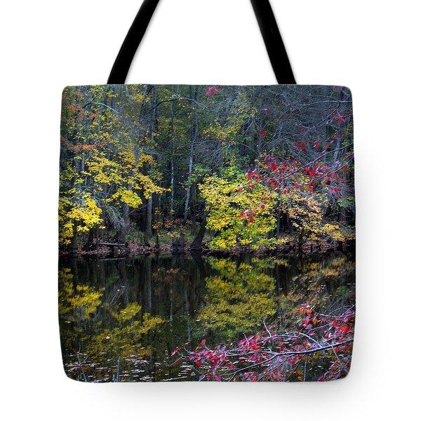 Congaree Swamp Tote Bag by Skip Willits