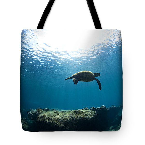 Contempltion Tote Bag by Sean Davey