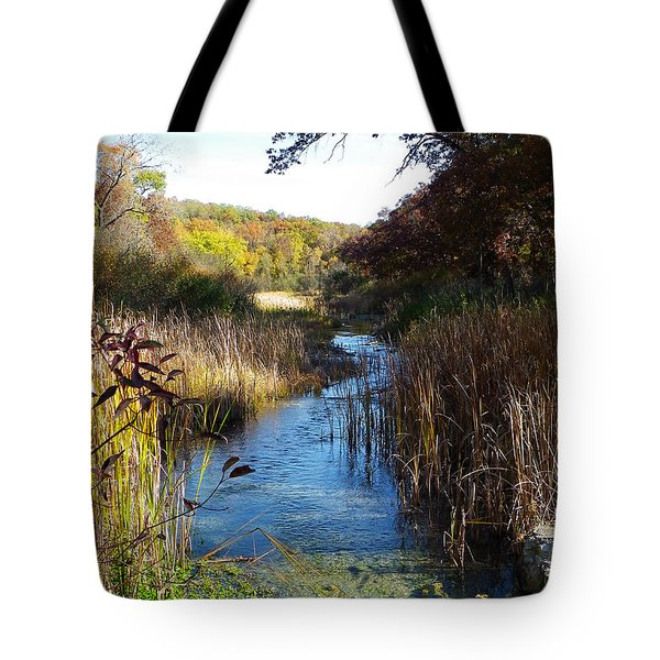 Cool Wisconsin Stream... Tote Bag by Tim Fillingim