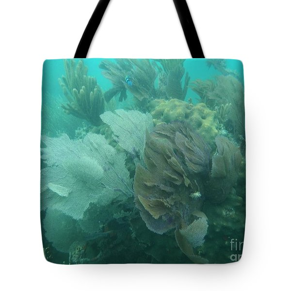 Coral Fans Tote Bag by Adam Jewell